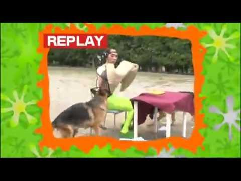 警察犬VS江頭2:50